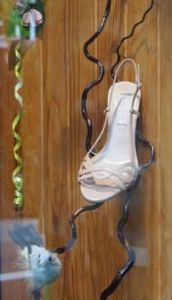 une-chaussure-sur-une-branche